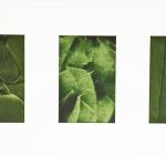 catalogue-053